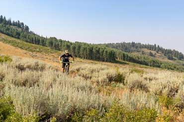 Kevin Holliday Mountain Biking in Park City, Utah