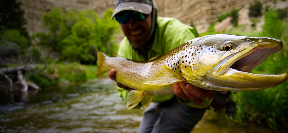 fly fishing uinta mountains jans fly shop