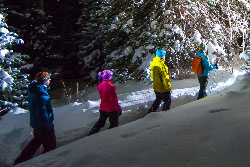 Guided Moonlight Snowshoe Tour