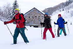 Guided Historic Snowshoe Tour