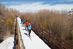Guided Cross Country Ski Tours