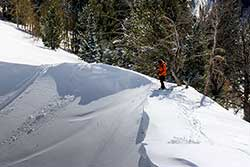 Backcountry Ski Rentals